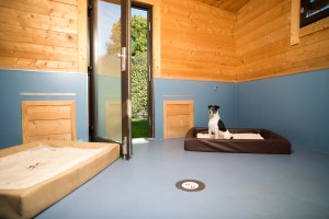 Canis Resort Dog Lodge innen (2)